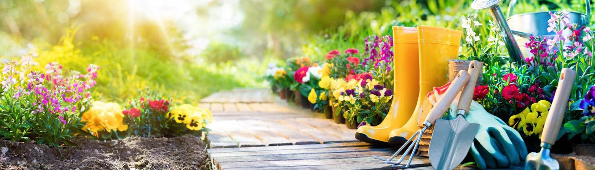 Petits travaux de jardinage